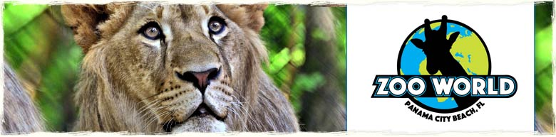 Zoo World in Panama City Beach