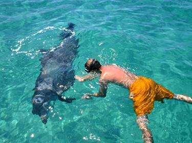 Dive Locker 06 07 08 The Scuba Diving In Panama City Beach