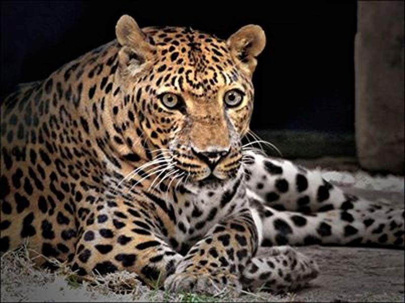 ZooWorld Animal Park in Panama City Beach, Florida
