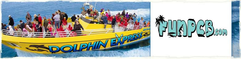 Dolphin Express in Panama City Beach